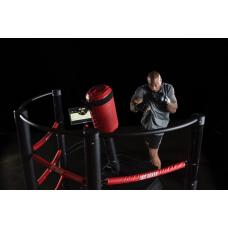 Bot Boxer Entrenador Virtual de Combate y Box para Gimnasio o Centro Recreativo