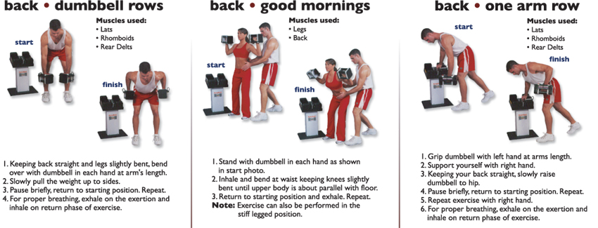 back_dumbell_rows__Back_good_mornings__Back_one_arm_row