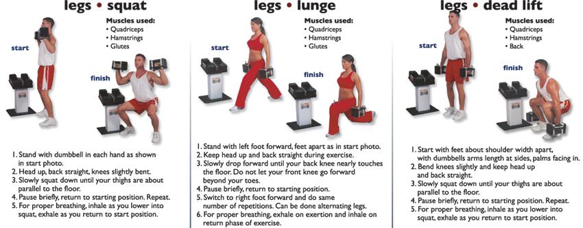 legs_squat_Lunge_dead_lift